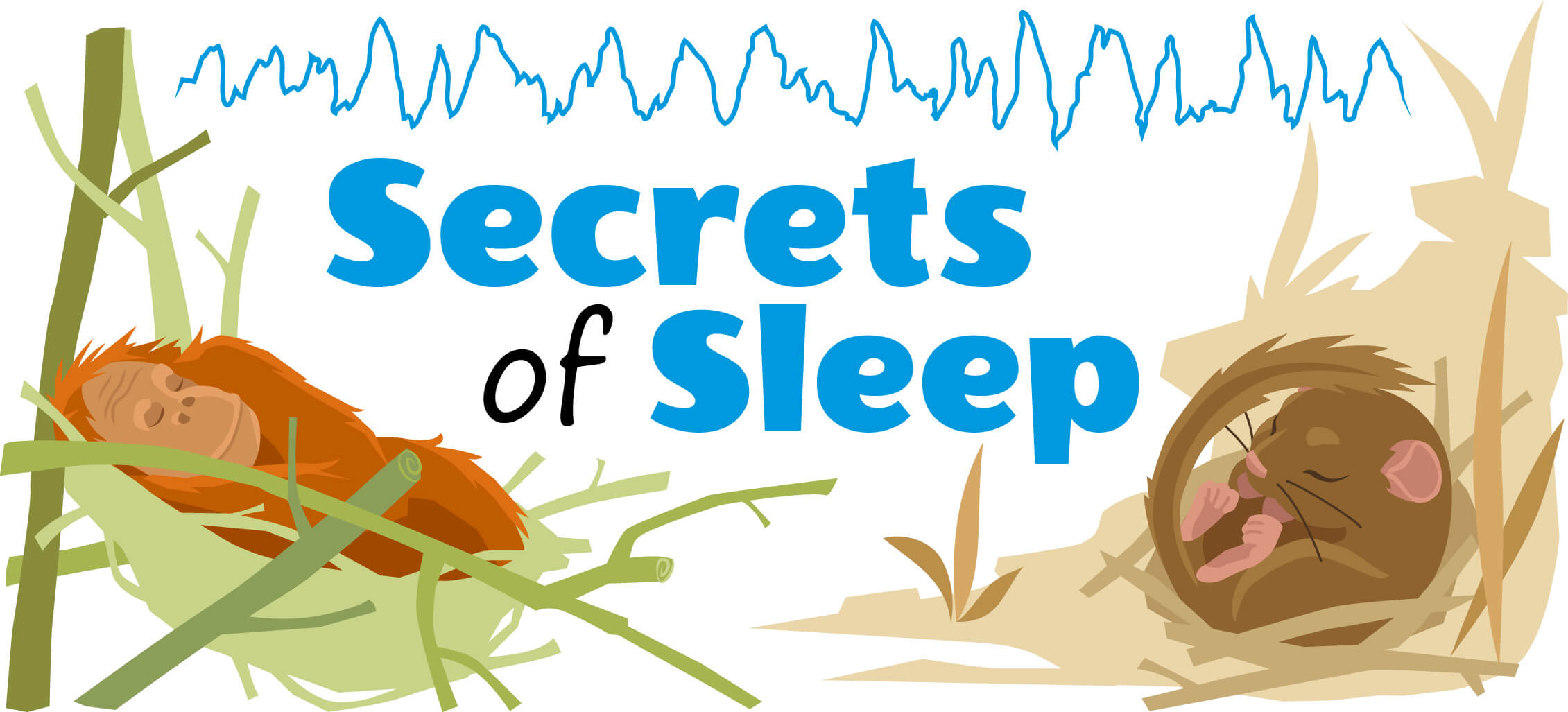 Secrets of sleep